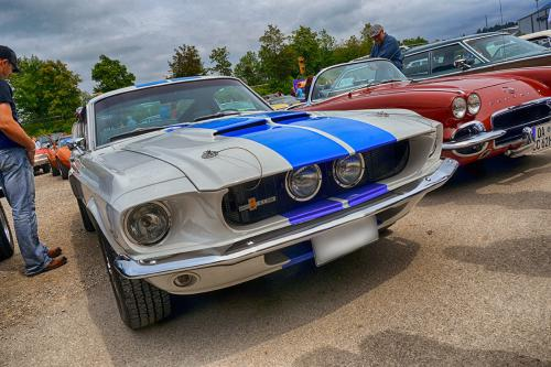 mustang_shelby_2919