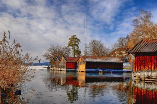 staffelsee_winter_3979